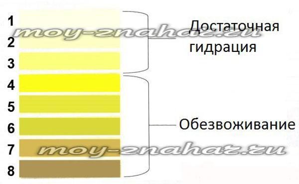 Моча желтого цвета почему