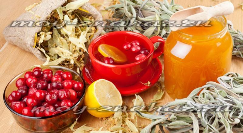 Как очистить сосуды от холестериновых бляшек и тромбов