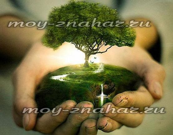 Медитация для очистки от негативных программ и создания успешного будущего