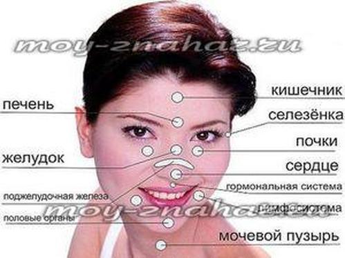 Заболевания почек: симптомы и признаки болезни