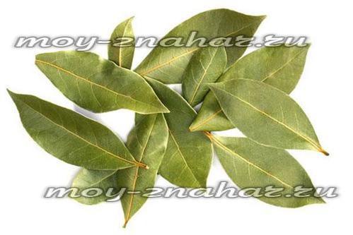 Чистка суставов лавровым листом, отзывы и рецепт